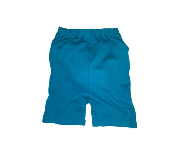 2 Blue Shorts 1 1