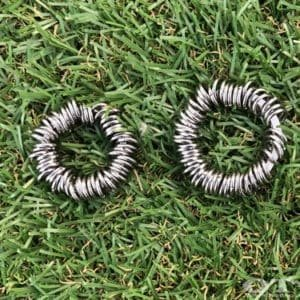 centipede-fidget